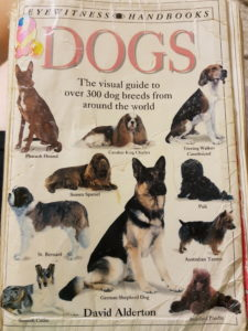 the-dog-book-classic